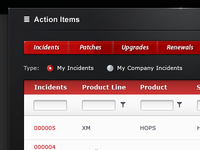 Infor Support - Action Items