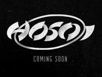 Hosoi Skateboards - Coming Soon