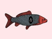 Fish–Bone