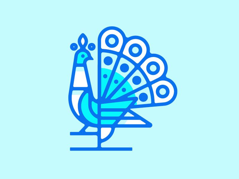 Peacock illustration logo bird peacock