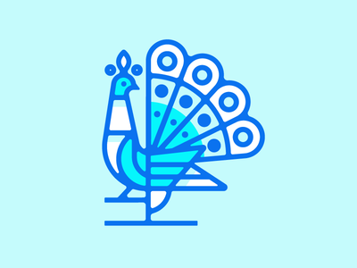 Peacock illustration logo bird peacock