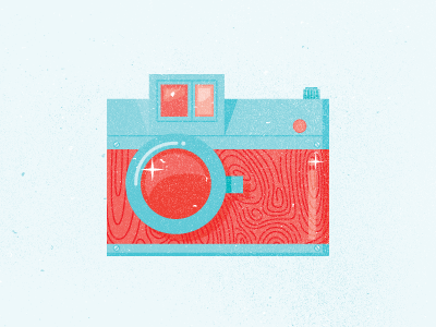 Camera Icon wood grain texture camera blue red vintage old