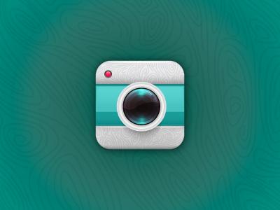 Wood camera icon