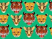 Big cat pattern