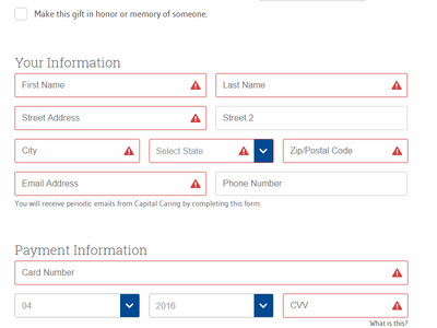 Visual Feedback on Form Validation donation feedback validation form