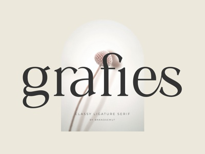 Grafies   Classy Ligature Serif invitation social media typography typeface ligature ligature font luxury font logo font modern font sans serif serif font fonts serif