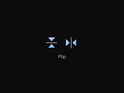 Flip / Motion icon motion