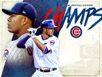 Cubs NL CHamps Graphic
