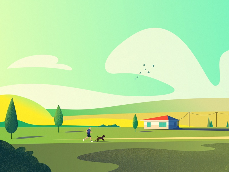 The Meadows House illustration color palette yellow green day sunny cloudy birds fields meadow run runner walking dog house illustration illustrator house home landscape