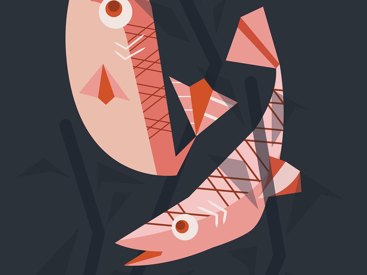 Trout vector design illustration