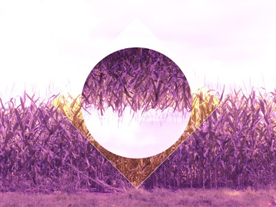 Polyscape crops reflect yellow magenta pink abstract creative design photo manipulation photography crops polyscape