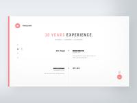 CV Webstite - Experience