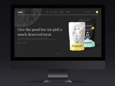 — lobo web design
