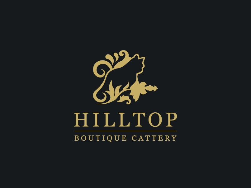 Visual Identity Design for Hilltop Boutique Cattery by Scott