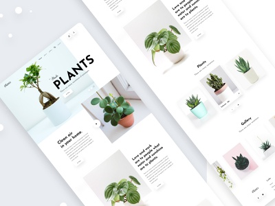 Plant Shop Landing Page webdesign designs 2020 trend full time job web ui design e-commerce website creative design landing page ui ux dribbbble design shop plants landing page concept