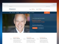 Pradco Website Redesign
