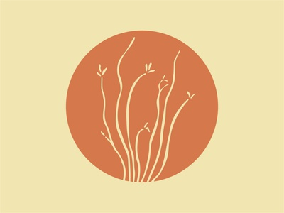 Ocotillo desert cactus illo mark logo icon illustration