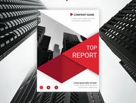 TOP REPORT