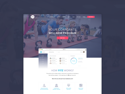 FITZ Redesign redesign cta clean flat ui landing page website fitz