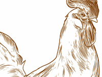 Etched style Chicken