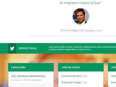 Wells Tobias - Website Redesign homepage website design wells tobias recruitment photoshop