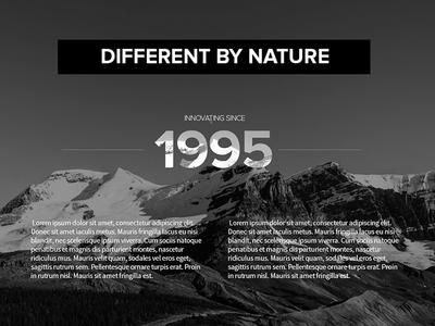 Alpha Micro Homepage Segment web design proxima nova type corporate