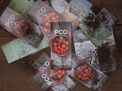 PCO Certified Organic Brochure branding photoshoot print design identity design brochure design