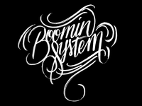 Boomin' System