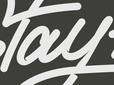 Stay Fly script design logo type lettering illustrator bezier vector
