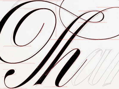 Working on some script lettering vectors type calligraphy typography lettering scripts bezier