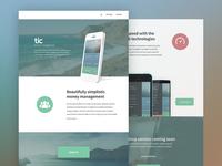 tic Website Design