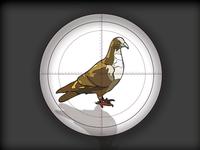 Target Pigeon