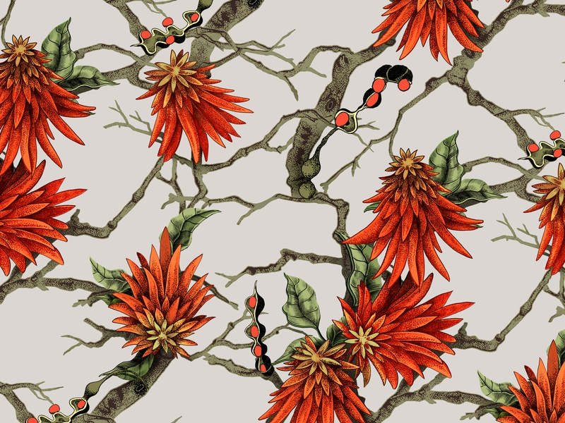 African Coral Tree Textile repeat textile branding print digital art south africa illustration