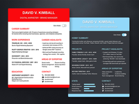 Light Theme and Dark Theme Resume