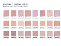 Rose Gold Swatches Study