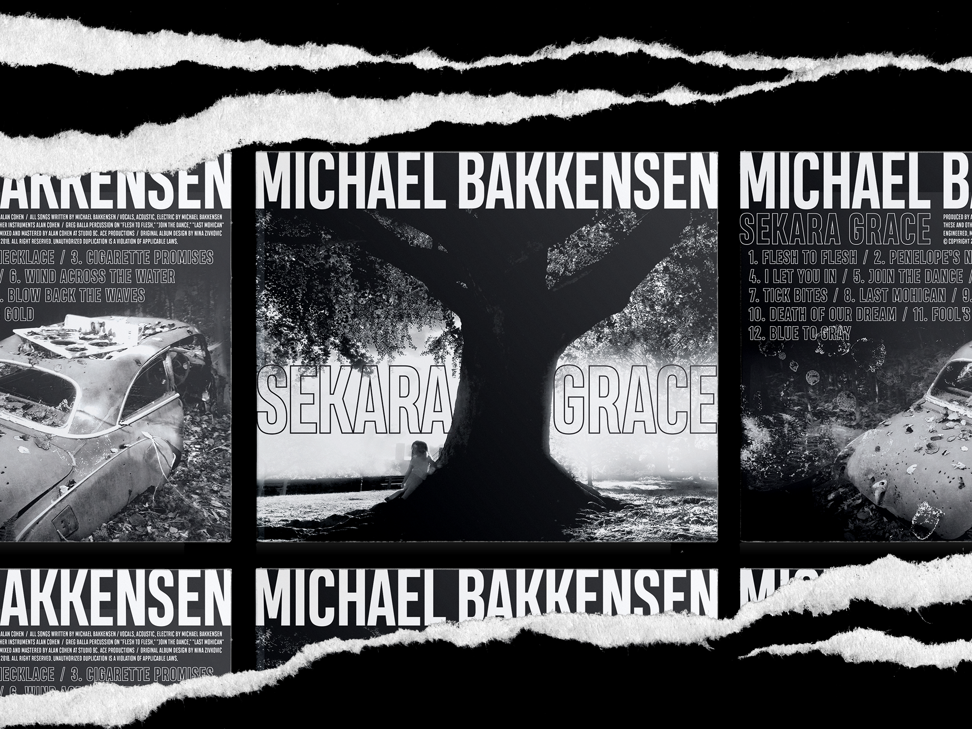 Ninazivkovic behance illustrator graphicdesign albumcover michael bakkensen sekaragrace hdr