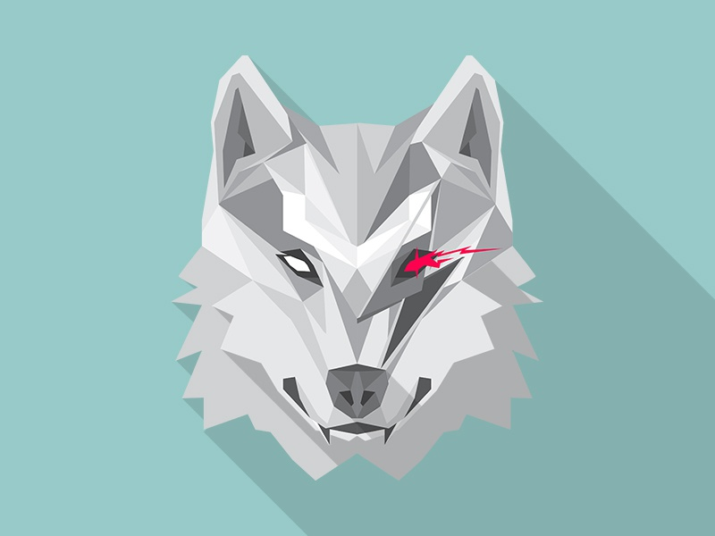 Bowiewolf wolfpack geometry animal vector long shadow lighting bolt flat illustration wolf polygons lobo