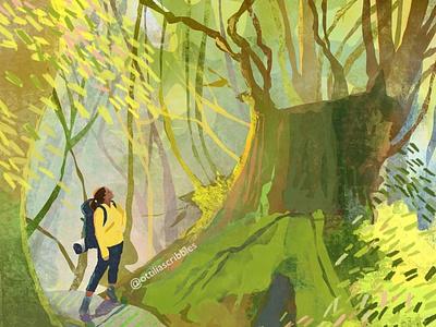 Hiking in Morning Light digital illustration illustration