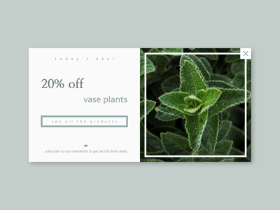 Daily UI 036 - Special Offer plant web design webdesign ux ui dailyui 036 dailyui036 daily ui dailyui pop up special offer