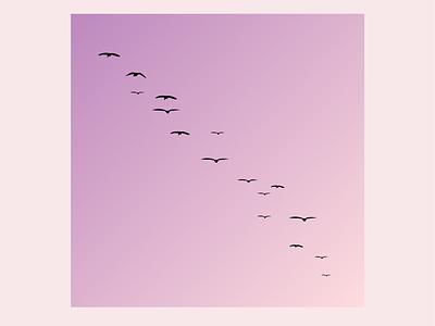 Seagulls bird pink purple sunset vector logo illustration design