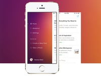 Mobile App Slide Menu