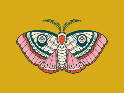 Moth Design moth illustration butterfly linework vector illustration moth
