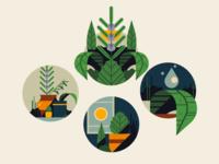 Herb Garden Icons