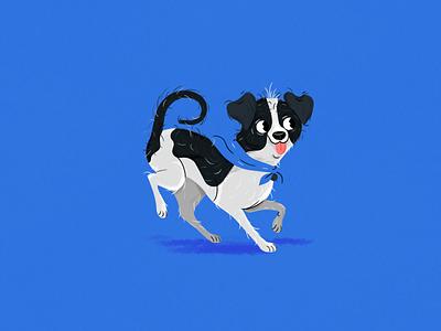 Doggo pet pup dog