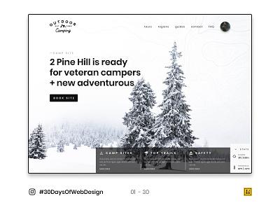 01 - 30 Instagram #30DaysOfWebDesign Challenge web icon typography adobe illustrator ui design branding logo figmadesign ui  ux