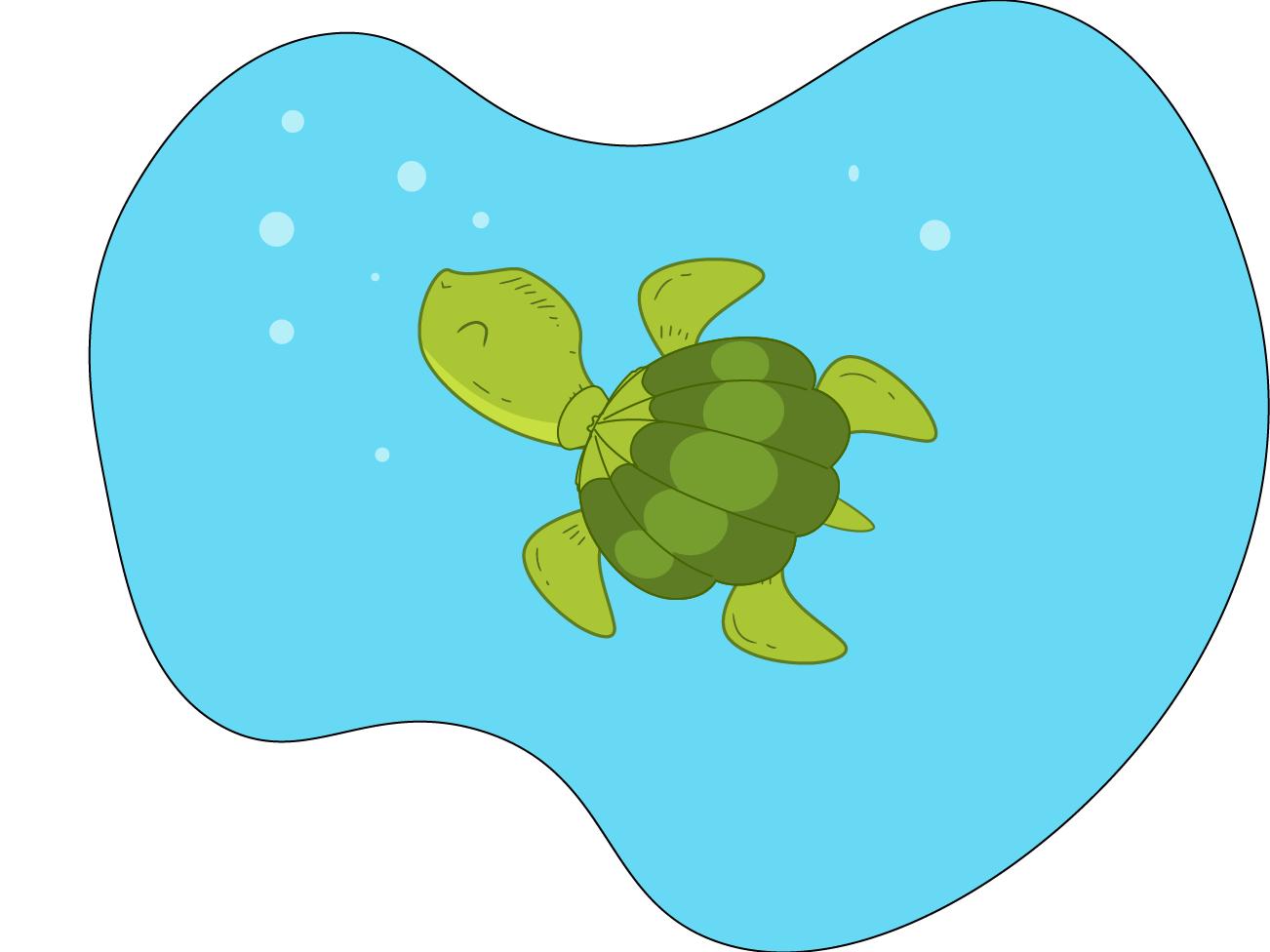 Magic Turtle cartoon art baby website animal web flat design vector ui illustration