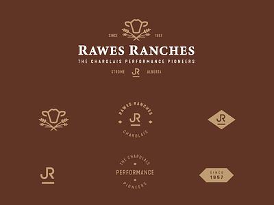 Rawes Ranches Logo + Brand Assets alberta farming bull cattle ranch assets logo brand