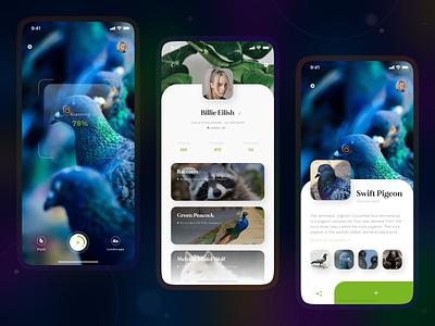 UI/UX for Naturalist. minimal animation responsive design app illustration ui design ux research ui ux design