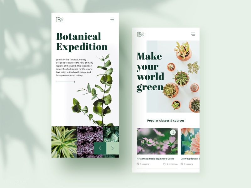 Responsive design modern minimalist botanical plants botany uidesign webdesign responsive website responsive design responsive