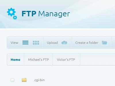 Ftp Manager 1 design website web psd free button navigation manager